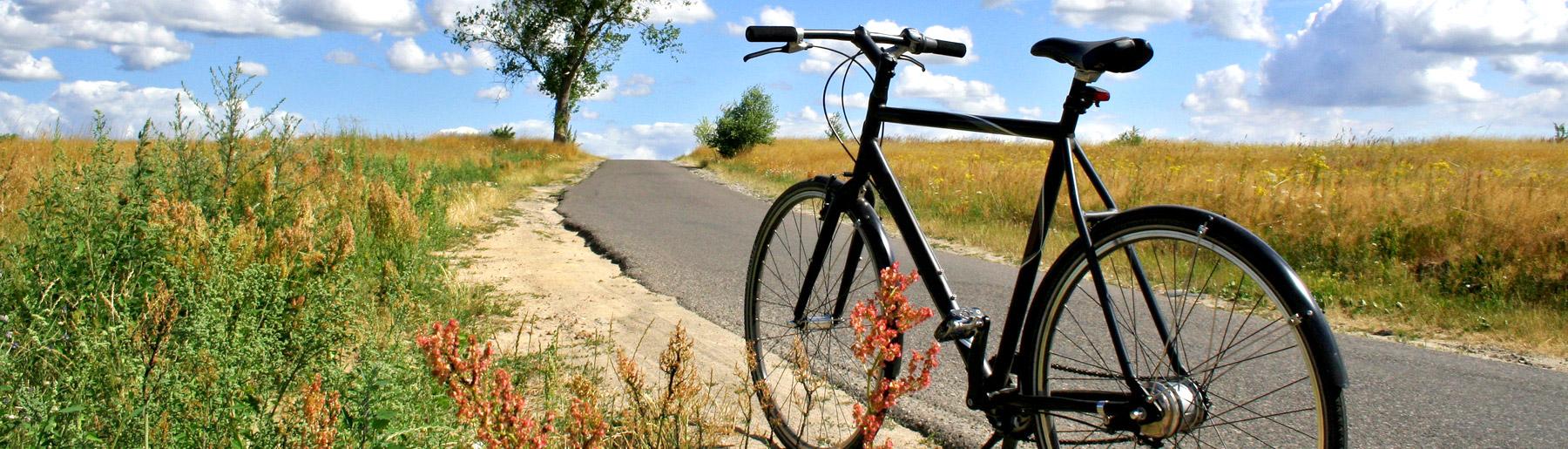 trekkingbikes_tourenraeder_nuernberg_erlangen_fuerth_schwabach_roth